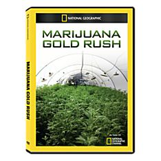 Marijuana Gold Rush DVD-R