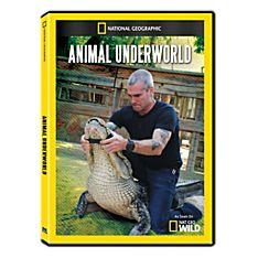 Animal Underworld DVD-R