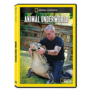 View Animal Underworld DVD-R image