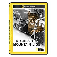 Stalking the Mountain Lion DVD-R