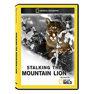 View Stalking the Mountain Lion DVD-R image