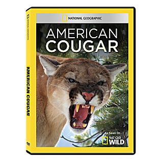 View American Cougar DVD-R image