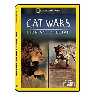 View Cats Wars: Lion vs. Cheetah DVD-R image