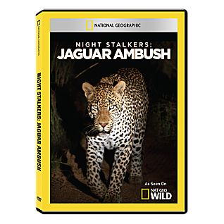 View Night Stalkers: Jaguar Ambush DVD-R image