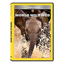 World Wild Web DVD-R, 2012