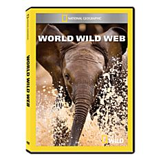 World Wild Web DVD-R