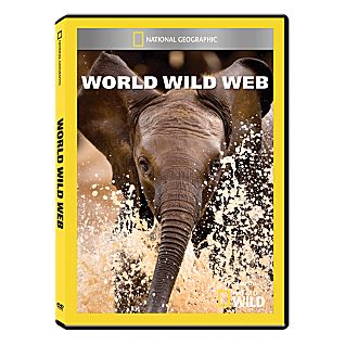 View World Wild Web DVD-R image