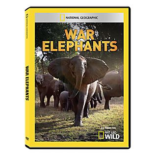 View War Elephants DVD-R image