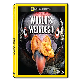 View World's Weirdest DVD-R image
