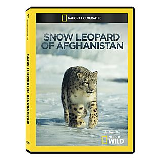 View Snow Leopard of Afghanistan DVD-R image