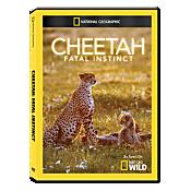 Cheetah: Fatal Instinct DVD-R 1095597