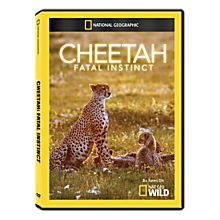 Educational Travel DVDs