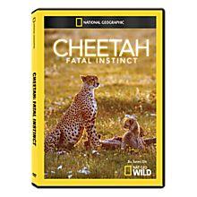 Cheetah: Fatal Instinct DVD-R