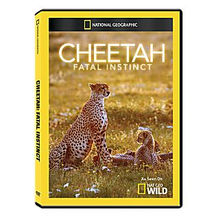 View Cheetah: Fatal Instinct DVD-R image