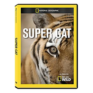 View Super Cat DVD-R image