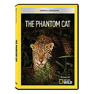 View The Phantom Cat DVD-R image