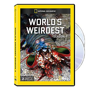View World's Weirdest Season Four DVD-R image