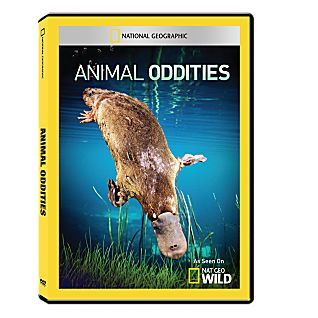 View Animal Oddities DVD-R image