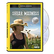 Shear Madness DVD-R, 2014