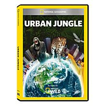 Urban Jungle DVD-R
