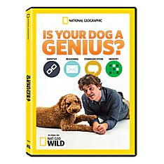 Is Your Dog a Genius? DVD-R