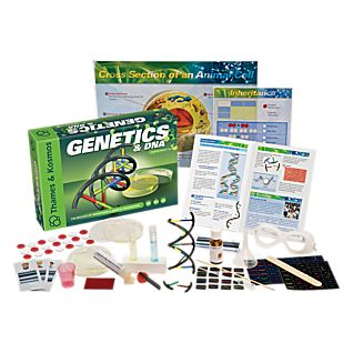 View Genetics and DNA Kit image