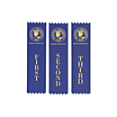 National Geographic Bee Ribbons - Set of 3
