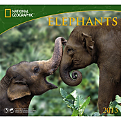 2013 National Geographic Elephants Wall Calendar