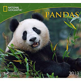 2013 National Geographic Pandas Wall Calendar