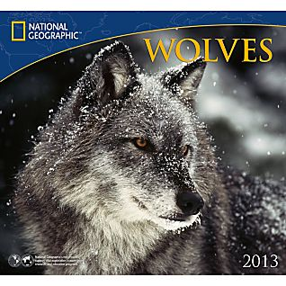2013 National Geographic Wolves Wall Calendar