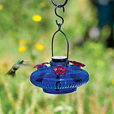 Handblown Glass Hummingbird Feeder, Crafted in Mexico
