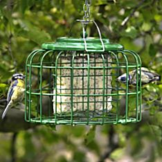 Safe Haven Suetcake Feeder