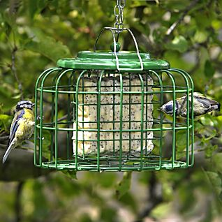 View Safe Haven Suetcake Feeder image