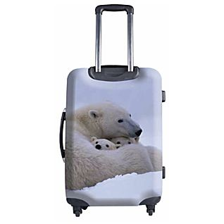 National Geographic Explorer 20-inch Polar Bear Hardside Luggage