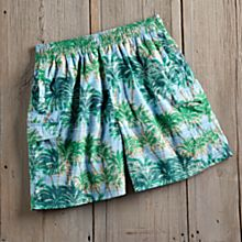 Men's Hawaiian Tropical Swim Shorts