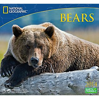 2014 National Geographic Bears Wall Calendar