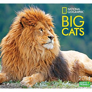 2014 National Geographic Big Cats Wall Calendar
