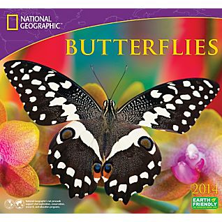 2014 National Geographic Butterflies Wall Calendar