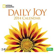 2014Daily Joy Wall Calendar