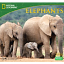 2014 National Geographic Elephants Wall Calendar