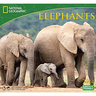 View 2014 National Geographic Elephants Wall Calendar image