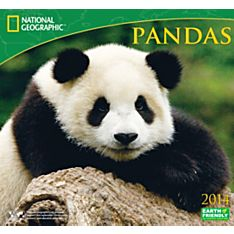 2014 National Geographic Pandas Wall Calendar