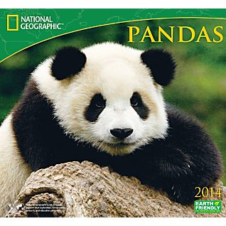 View 2014 National Geographic Pandas Wall Calendar image