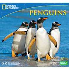 2014 National Geographic Penguins Wall Calendar