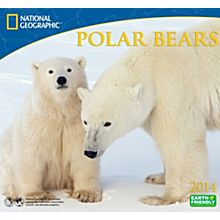 2014 National Geographic Polar Bears Wall Calendar