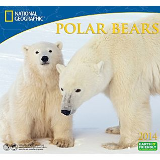 View 2014 National Geographic Polar Bears Wall Calendar image