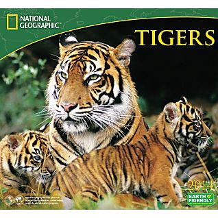 View 2014 National Geographic Tigers Wall Calendar image