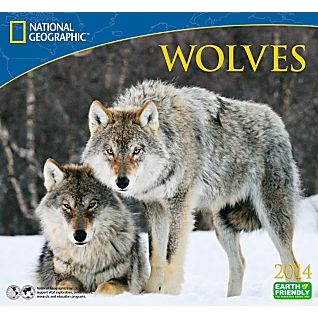 View 2014 National Geographic Wolves Wall Calendar image