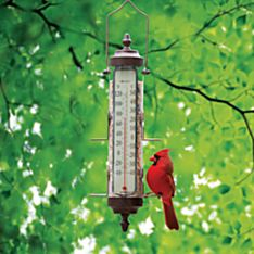 Combination Birdfeeder and Thermometer