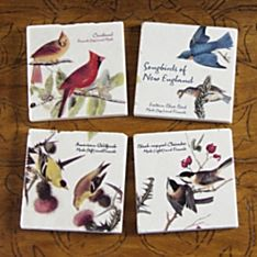 Handcrafted Songbirds of New England Coasters - Set of 4